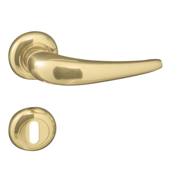 Rosettengarnitur in Messing glänzend (BB). Rosette: 48 mm, Griff: 115 mm Bild1